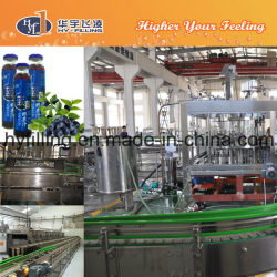 Glass Bottle Blueberry Juice Filling Machine